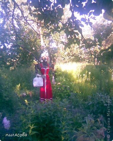 Мадам Чучелло живёт у нас в огороде среди своих друзей петушка и Божьей коровки. фото 1