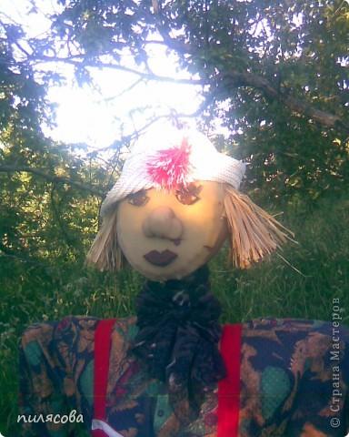 Мадам Чучелло живёт у нас в огороде среди своих друзей петушка и Божьей коровки. фото 3