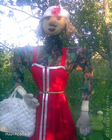 Мадам Чучелло живёт у нас в огороде среди своих друзей петушка и Божьей коровки. фото 5