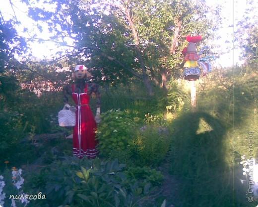 Мадам Чучелло живёт у нас в огороде среди своих друзей петушка и Божьей коровки. фото 6