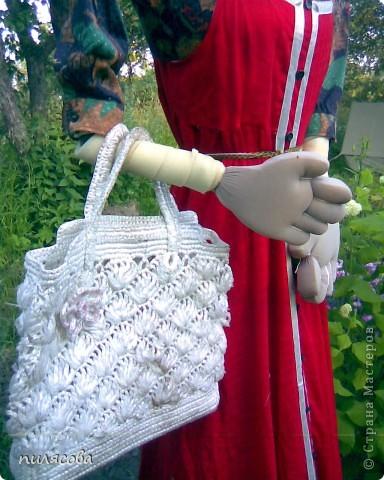 Мадам Чучелло живёт у нас в огороде среди своих друзей петушка и Божьей коровки. фото 11