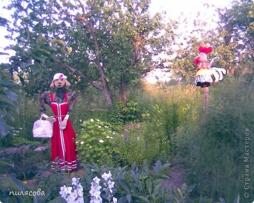Мадам Чучелло живёт у нас в огороде среди своих друзей петушка и Божьей коровки. фото 13