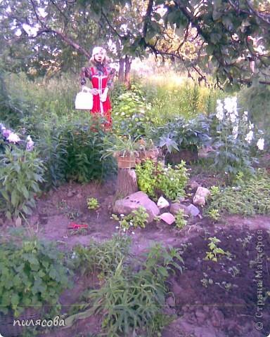 Мадам Чучелло живёт у нас в огороде среди своих друзей петушка и Божьей коровки. фото 14