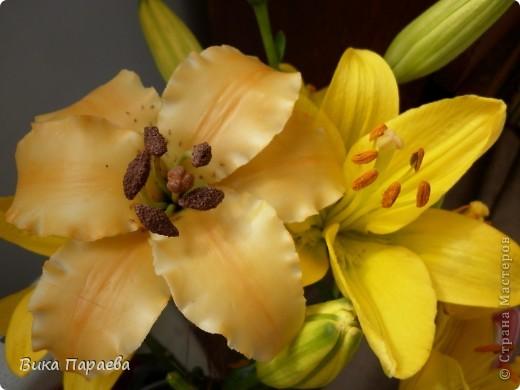 Моя первая лилия на фоне натуральной-отличий куча, но я старалась) Сами лилии я очень люблю, но они у меня как то не совсем получаются, значит еще не пришло время чтобы их лепить натурально. фото 1