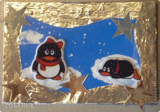 Это все мои пингвины! фото 3