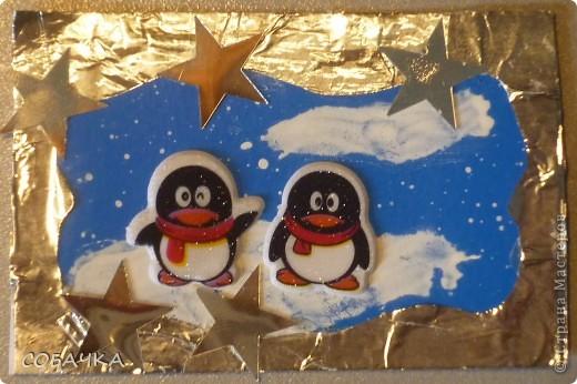 Это все мои пингвины! фото 4