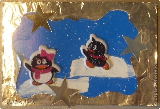 Это все мои пингвины! фото 5