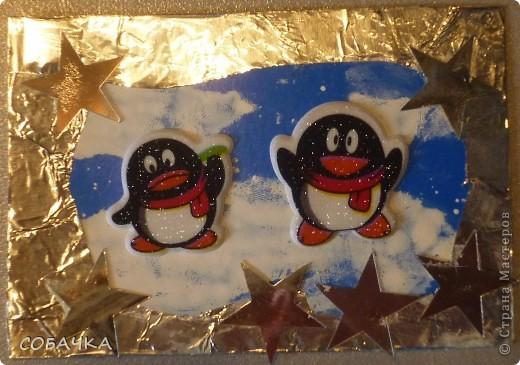 Это все мои пингвины! фото 6