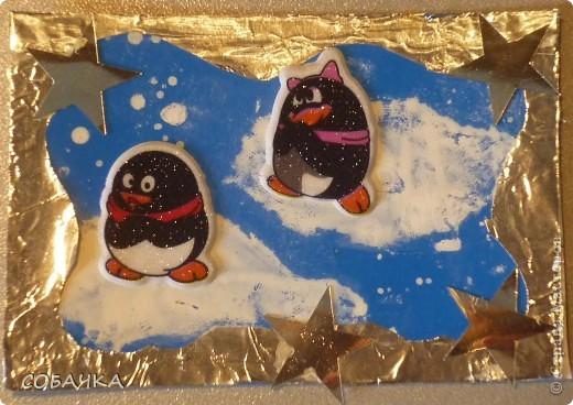 Это все мои пингвины! фото 7