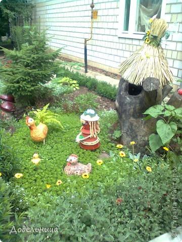 Птичница с куриной семейкой. фото 8