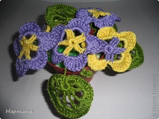 Вот такие цветочки наваялись за последние холодные денёчки.Это на клумбочке, фото 2