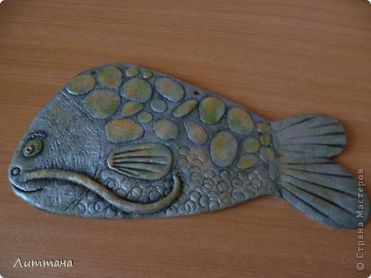 Подружка солнечному рыбу-выросла рыбка-ромашка. фото 2
