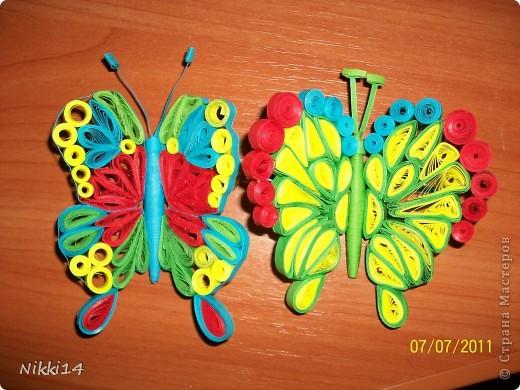 Теперь и у меня есть свои бабочки.
