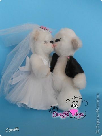 Эти влюбленные молодожены никогда не устанут целоваться. фото 1