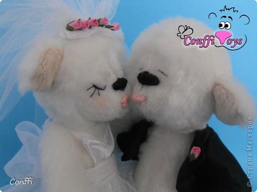 Эти влюбленные молодожены никогда не устанут целоваться. фото 3