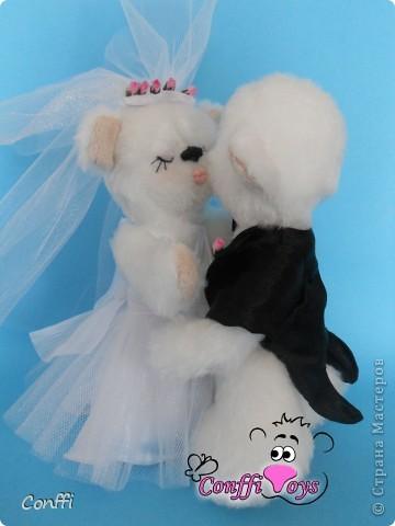 Эти влюбленные молодожены никогда не устанут целоваться. фото 4