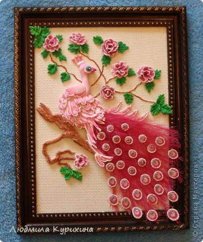 Розовый павлин