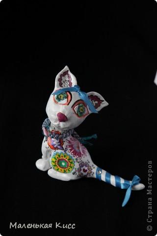 Кошечка для мечтателей фото 2