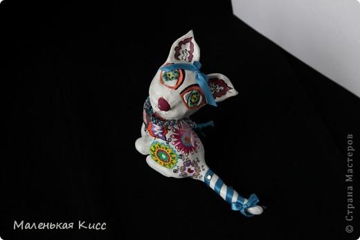 Кошечка для мечтателей фото 3