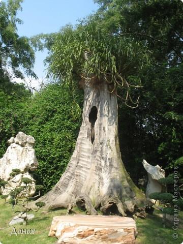 Сегодня я приглашаю вас на экскурсию в еще одну достопримечательность Тайланда - парк миллионолетних камней.  фото 30
