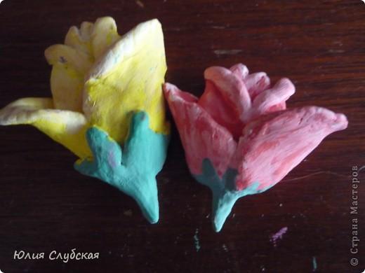 Вот, решила постигать новый вид искусства - лепку. Лепила я из пластики, что-то вроде пластилина, который застывает при контакте с воздухом. Но ведь фигурки не простые, а с магнитом сзади, т.е. можно лепить на холодильник. Это мои цветочки, фото 2