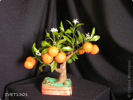 Давно хотела слепить апельсиновое дерево из своего ХФ и вот наконец я его сделала!!! Далее я разместила фотографии разных ракурсов.  фото 2