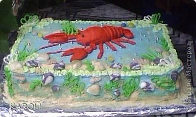 новый тортик
