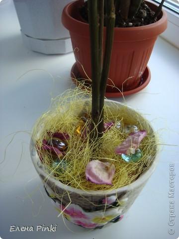 Здравствуйте дорогие мастерицы!!!наверняка не я одна такая...мне вот всегда очень жалко выбрасывать цветочки после того как они завяли и в этот раз после своего дня рождения я решила не выкидывать, а посушить...   фото 3