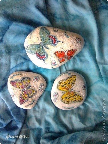 Бабочки! фото 1