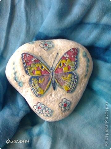 Бабочки! фото 2