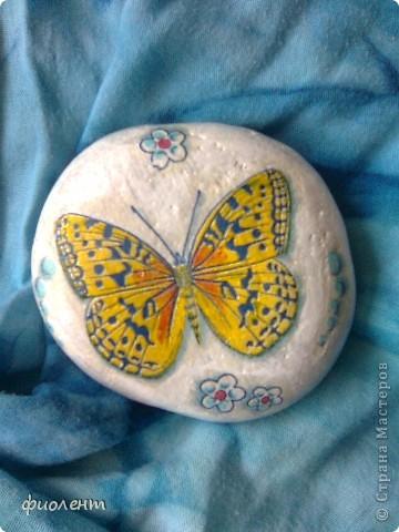 Бабочки! фото 3
