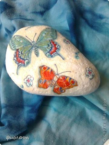 Бабочки! фото 4