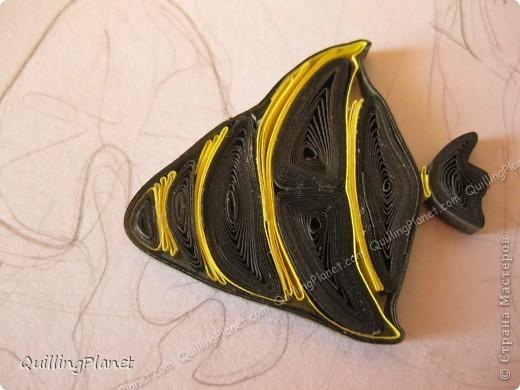 Картина панно рисунок Мастер-класс Рама паспарту Бумагопластика Вырезание Квиллинг Аквариум Бумага Бумажные полосы Картон фото 23