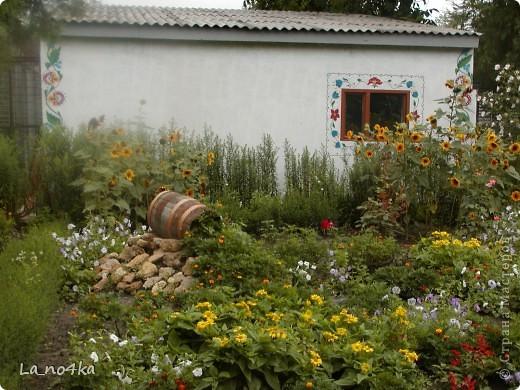 В г.Измаиле ( Одесской области ) часть цветника  Станции юннатов оформили с элементами стиля кантри фото 5