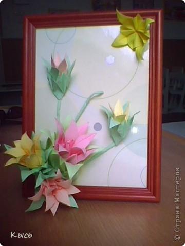 Лилии цветут для учителя сына.