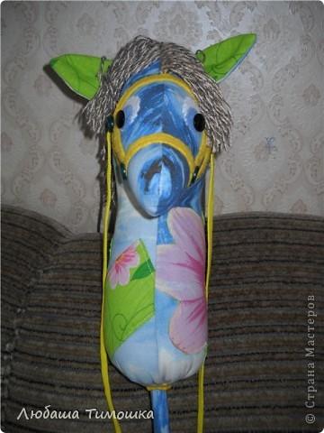Сшила сегодня ребятишкам лошадку   Ткань - бязь, по бокам сделала апликацию (цветочки и листики) и пришила кармашек. Палка - это остаток от трубы сантехнической (не знаю как правильно называется), обшитая тканью. Внизу пришила мягкий мешочек, чтобы не стукались о палку. фото 4