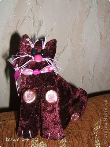 Котейка гламурный
