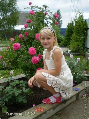 Розы как они прекрасны фото 6