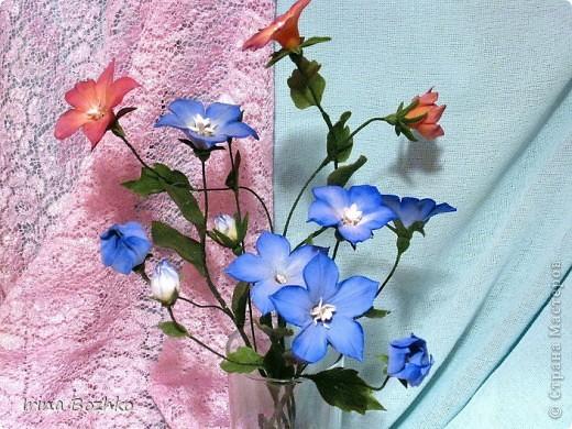 """Доброго времени суток ,жителям страны мастеров!!  Не помню, кто из девочек сказал """" уж что налепилось, то налепилось""""  ,но я лепила колокольчик по замечательной книге Юкико Мияй . к сожалению она на японском. Цветы из глины DECO. фото 1"""