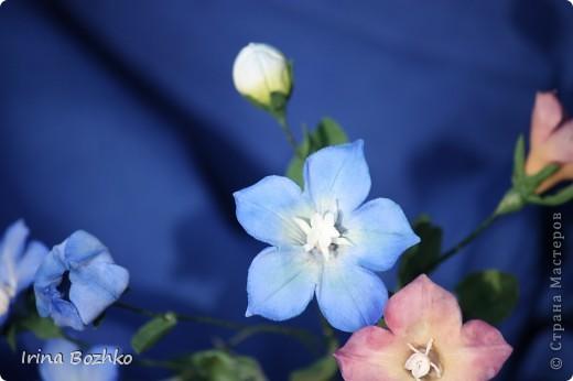"""Доброго времени суток ,жителям страны мастеров!!  Не помню, кто из девочек сказал """" уж что налепилось, то налепилось""""  ,но я лепила колокольчик по замечательной книге Юкико Мияй . к сожалению она на японском. Цветы из глины DECO. фото 3"""