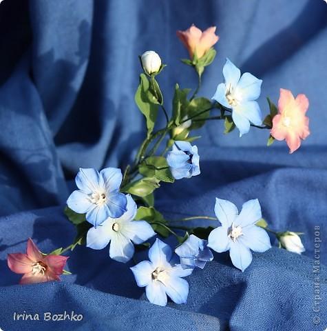 """Доброго времени суток ,жителям страны мастеров!!  Не помню, кто из девочек сказал """" уж что налепилось, то налепилось""""  ,но я лепила колокольчик по замечательной книге Юкико Мияй . к сожалению она на японском. Цветы из глины DECO. фото 4"""