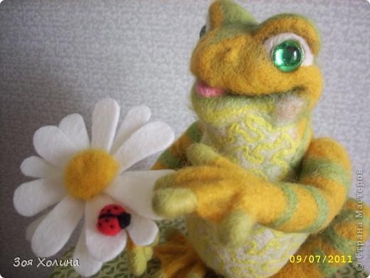 Лягушка + Ромашка + Букашка фото 5