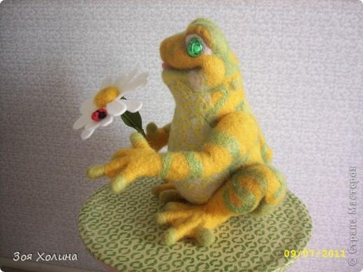 Лягушка + Ромашка + Букашка фото 3