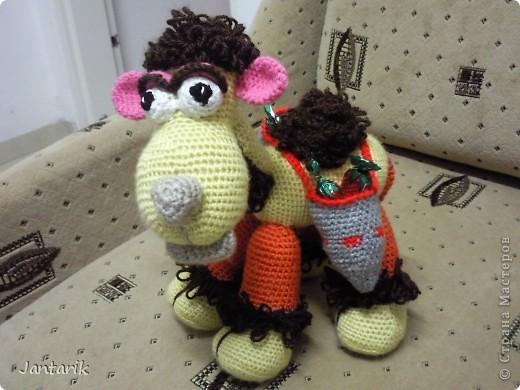 У моей подруги скоро день рождения и увидев верблюжонка от Елены Беловой,я подумала,что это будет неплохой подарок. фото 4