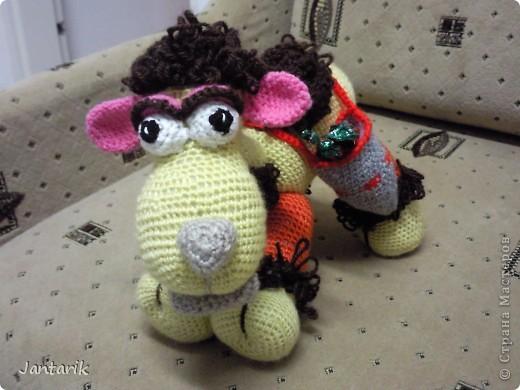 У моей подруги скоро день рождения и увидев верблюжонка от Елены Беловой,я подумала,что это будет неплохой подарок. фото 5
