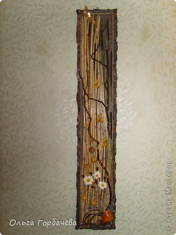 Рамка- кора,Ромашки из кожи крашенные и лаченые.Веточки любимой ветвистой ивы,которую мне повезло заготовить. фото 1