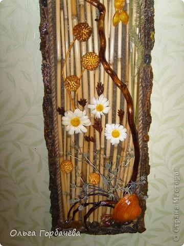 Рамка- кора,Ромашки из кожи крашенные и лаченые.Веточки любимой ветвистой ивы,которую мне повезло заготовить. фото 2