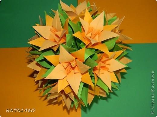 кактус фото 2