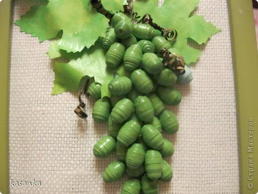 Там где зреет виноград зеленый... фото 2