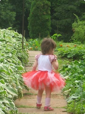 Увидев недавно на просторах страны фото девочек в таких пачках не смогла устоять и тоже сделала такую красоту. Сделала для дочки подружки, так как у меня мальчик :)  Вчера мы эту красоту выгуляли в ботаническом саду. фото 2